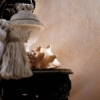 Декоративное покрытие Veneziano Grassello 600